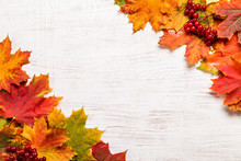 Image With Autumn Leaves.