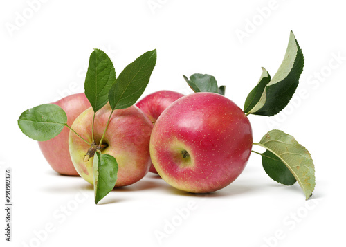 Apple on white background. Nature, dieting. - 290919376