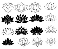 Set Of Stylized Lotuses. Collection Of Lotus Flowers For A Logo. Black White Vector Illustration. Tattoo.