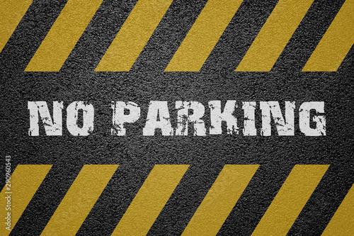 No Parking Sign on asphalt ground