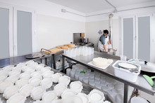Cheesemaker Pours The Rennet