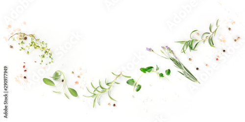 Fototapeta A panorama of culinary aromatic herbs on a white background, a flat lay composition with copy space, a cooking design template obraz