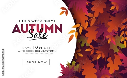 Fototapeta Sale banner with foliage for autumn promotions vector illustration. Profitable proposition save 10 percent this week only. Landing page with fall leaves and shop now button. Advertising concept obraz
