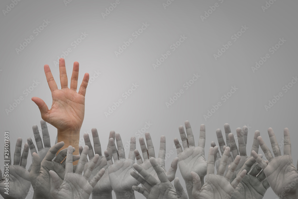 Fototapety, obrazy: Group of human hands raised high up on grey