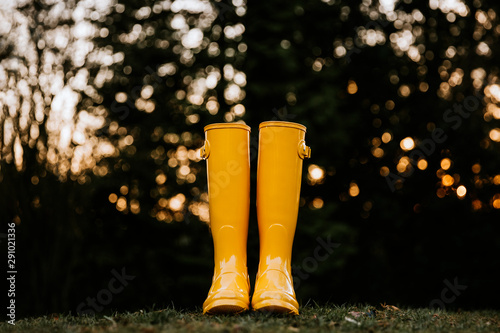 Low angle view of yellow rain boots on grass