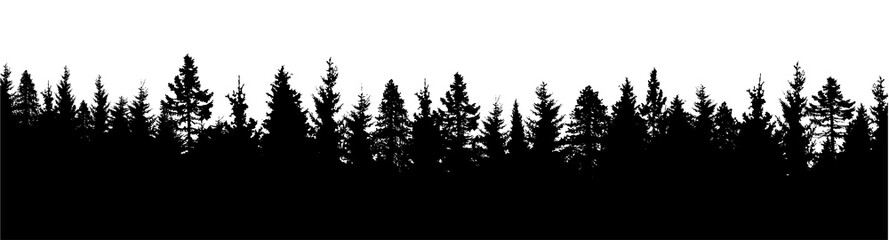 Forest silhouette. Wood background. Vector illustration