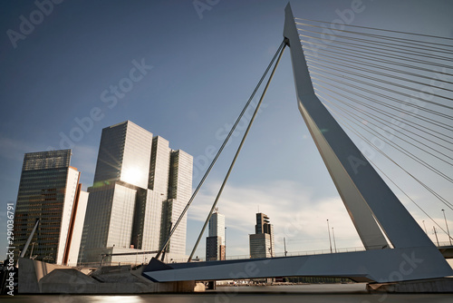 Foto auf AluDibond Schwan Erasmus bridge in the city centre of Rotterdam