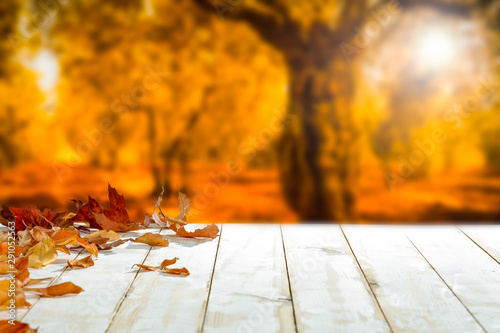 Poster Autumn White wooden table with leaves and blurred autumn background.