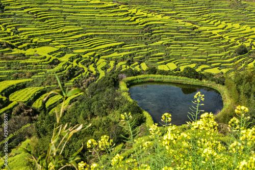 Photo  Mountain scenery in Wuyuan, Jiangxi, China