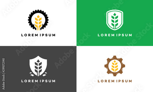 Photo  Set of Wheat Agriculture Industry logo symbol icon, Wheat Shield logo designs, W
