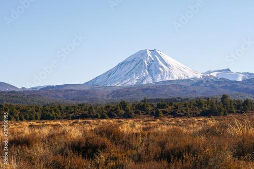 Fotografie, Tablou  Tongariro National Park New Zealand
