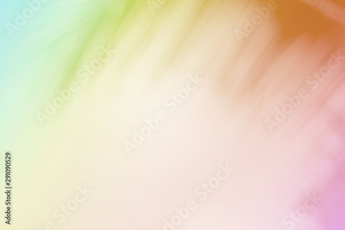 Soft blurred tropical palm leaf with a pastel color background. Fototapet