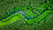 Leinwanddruck Bild - River and green forest in Tuchola natural park, aerial view