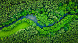 Fototapeta Las - River and green forest in Tuchola natural park, aerial view