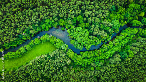 plakat River and green forest in Tuchola natural park, aerial view