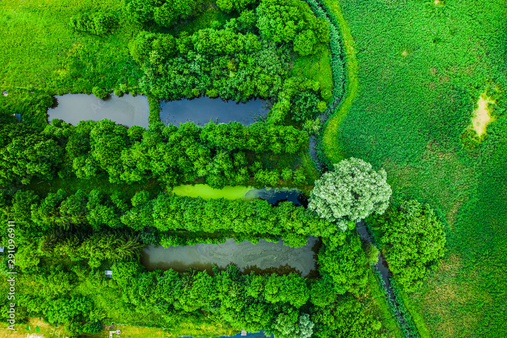 Fototapety, obrazy: River and small fish ponds in summer, Poland from above