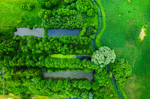 Fotografie, Obraz  River and small fish ponds in summer, Poland from above