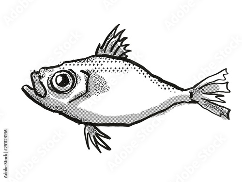 Japanese Dory Fish Cartoon Retro Drawing Wallpaper Mural