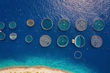 Luftaufnahme Einer Fischfarm M...