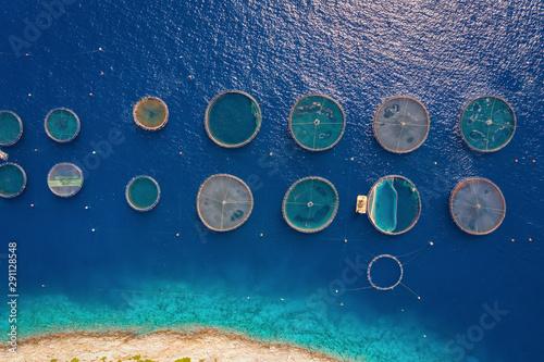 Photo Luftaufnahme einer Fischfarm mit den runden Zuchtnetzen in den blauen Gewässern