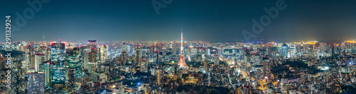 Cityscape of Tokyo skyline, panorama aerial skyscrapers view of office building and downtown in Tokyo in the evening Wallpaper Mural