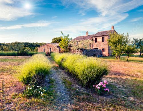 Fotografiet Splendid summer view of clasical Tuscanian garden