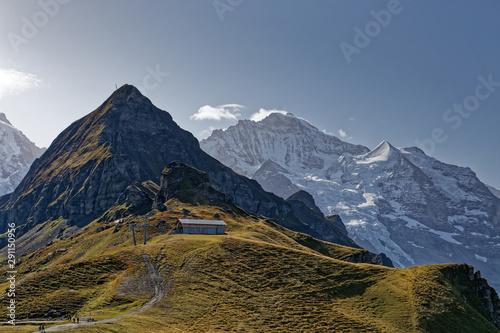 Dans les Alpes Suisses