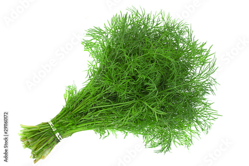 Photo  Dill herb bunch