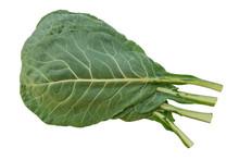 Collard Greens (Brassica Olera...