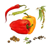 Different Types Of Peppers, Sw...