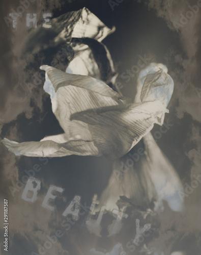 Valokuvatapetti Modern art. White wilted flower and writing Beauty
