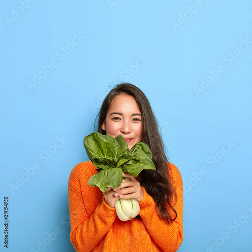 Fototapeta Satisfied Korean woman with pleased face expression, buys healthy dieting food, holds raw green vegetable, going to make tasty vegetarian lunch, wears casual orange jumper, poses over blue wall obraz