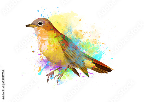 Watercolor Nightingale bird Drawing on white canvas Wallpaper Mural