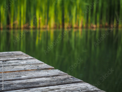 Fotografie, Obraz  Wooden pier on a natural pond surrounded by reed