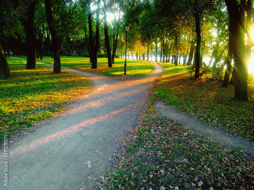 Fotografia, Obraz Bifurcation of a footpath in the park, evening landscape