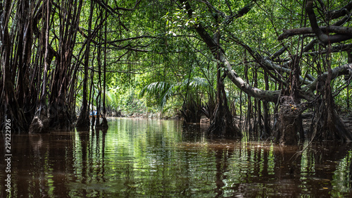 the little amazon in pang-nga in Sang Nae Canal thailand Canvas Print