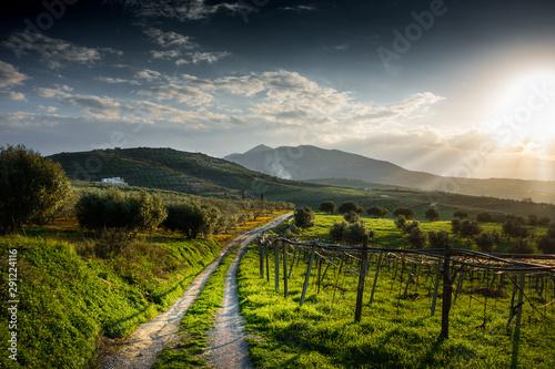 Fotomural  Countryside landscape