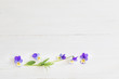 viola flowers on wooden background