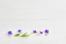 Viola Flowers On Wooden Backgr...
