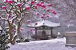 Leinwanddruck Bild - 겨울 사찰