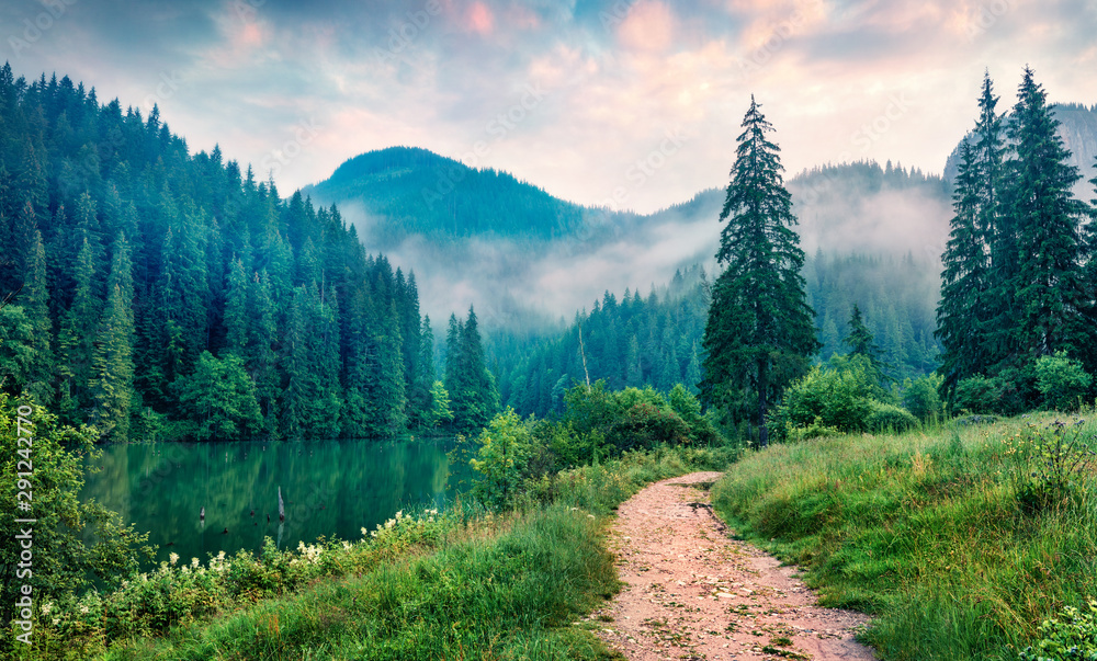 Fototapeta Misty morning scene of Lacu Rosu lake. Foggy summer sunrise in Harghita County, Romania, Europe. Beauty of nature concept background.