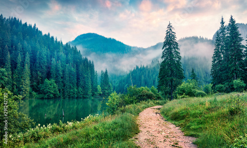 Spoed Foto op Canvas Weg in bos Misty morning scene of Lacu Rosu lake. Foggy summer sunrise in Harghita County, Romania, Europe. Beauty of nature concept background.