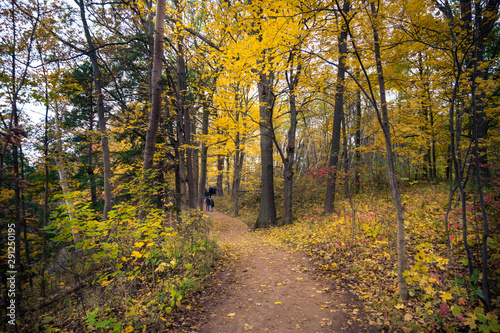Beautiful fall autumn landscape  near Toronto Canada Wallpaper Mural