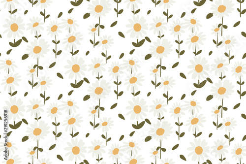 Fototapeta seamless pattern white daisies on white background obraz na płótnie