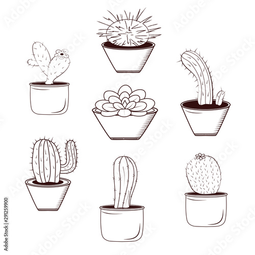 Set cactus flowers in pots, black and white lines isolated on white background Wallpaper Mural