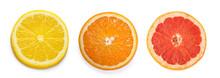 Citrus Slices, Orange, Lemon, ...