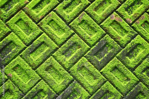 苔の背景素材 積みブロックに生えた苔 Fototapet
