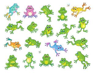 Duży zestaw zabawnych żab w różnych kolorach i pozach. W stylu kreskówkowym. Pojedynczo na białym tle.