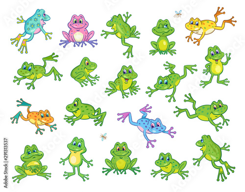 Photo A large set of funny frogs in various colors and poses
