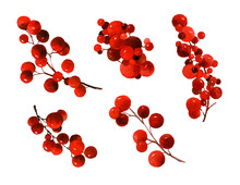 Set Of Red Berries On Branches...